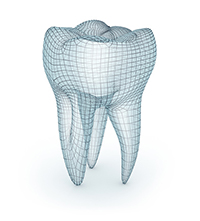 a 3D image of a tooth from Sawrie Orthodontics in Chattanooga, TN